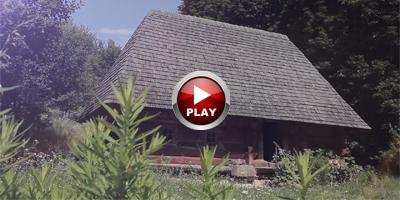 12 videooperator_drobych_vesilja
